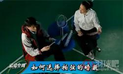 如何挑选羽毛球、球拍、拉线磅数 《专家把脉》第30集