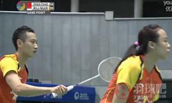 张楠/赵芸蕾VS雷扎/玛丽莎 2014日本公开赛 混双1/4决赛视频