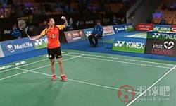 王适娴VS内维尔 2014丹麦公开赛 女单1/4决赛视频