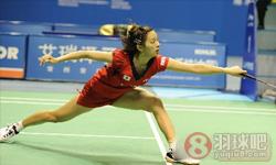 刘鑫VS高桥沙也加 2013中国大师赛 女单半决赛视频