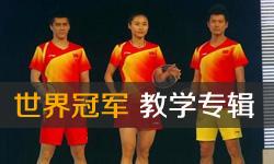 世界冠军羽毛球教学视频