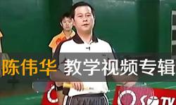 陈伟华羽毛球教学视频